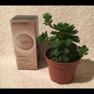 NEW ALGENIST REVEAL Concentrated Luminizing Drops.